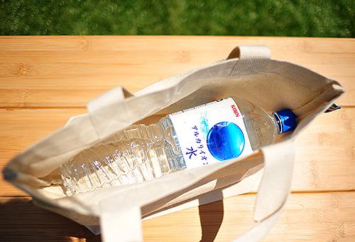 2Lペットボトルもゆとりをもって入れることができます
