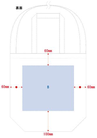 裏面B:印刷最大範囲:B/W250×H220(mm)