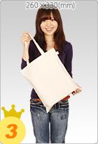 ライトキャンバスバッグ (M)A4ファイルサイズ