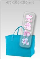 1553-01 13.6オンスキャンバスレコードバッグ